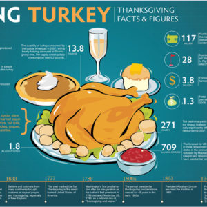 Talking Turkey Thanksgiving Facts & Figures